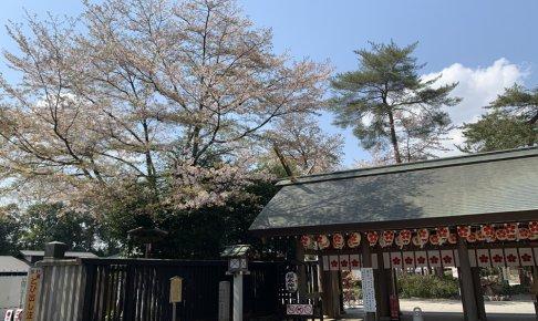 櫻木神社前